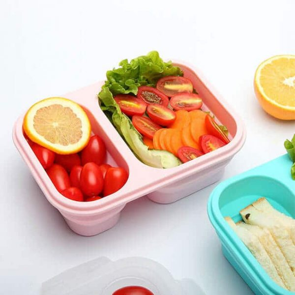 silicone boxes nutrition lunch